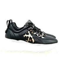 Cesare Paciotti Sneakers - Noir