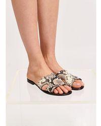Essentiel Antwerp Snake print sandals Vapocalypse - Marrone