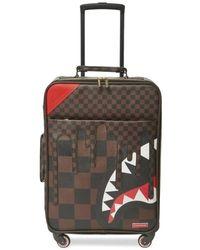 Sprayground Suitcase - Bruin