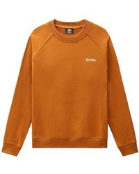 Dickies Sudadera - Orange