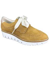 DL SPORT® Sneaker - Marron