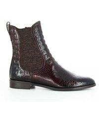 Pertini Chelsea Boots - Bruin