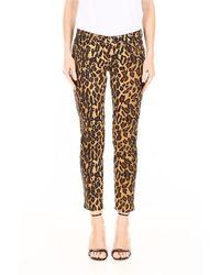 Miu Miu Leopard-printed Jeans With Patch - Bruin