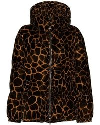 Moncler Jacket - Bruin