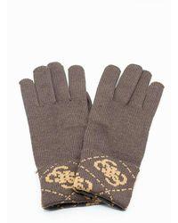 Guess Gloves - Bruin