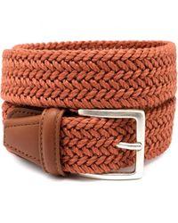 Anderson's Cinturón - Oranje