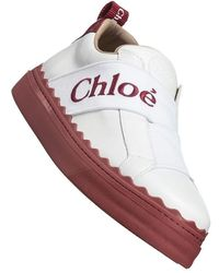 Chloé Low Top Sneakers - Wit