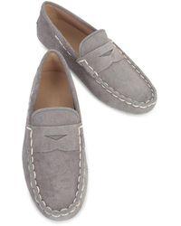 Tod's Shoes Gris