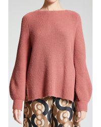 Maliparmi Sweater Rosa