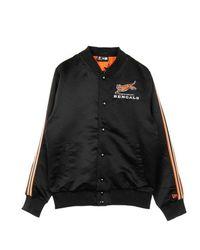 KTZ Jacket 12123856 - Zwart