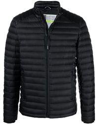 Moose Knuckles Jacket - Zwart