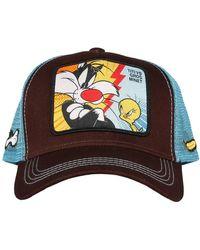 Capslab Looney Tunes Cap - Bruin
