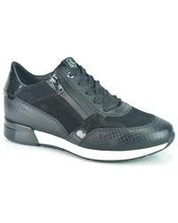 DL SPORT® Shoes - Zwart