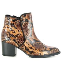 Gabor Ankle Boots - Bruin