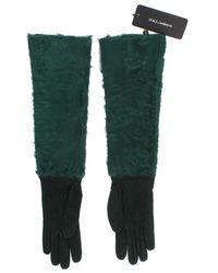 Dolce & Gabbana Xiangao Fur Elbow Gloves - Groen