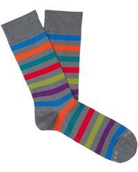 Gallo Socks - Grijs