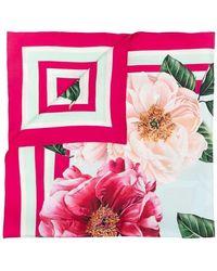 Dolce & Gabbana Foulard - Roze