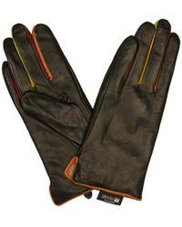 Mywalit Gloves - Groen