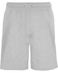 COLORFUL STANDARD Shorts - Grijs