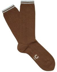 Fred Perry Socks - Bruin