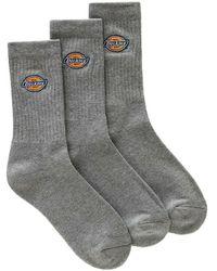 Dickies Socks 3-pack - Grijs