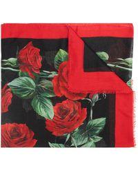 Dolce & Gabbana Rose-print Twill Scarf - Rood