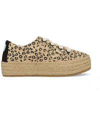 TOMS Sneakers 10016308 - Bruin