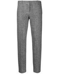 Circolo 1901 Tailored Pants - Grijs