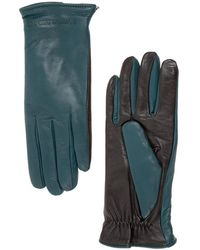 EA7 Gloves - Blauw