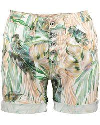 Please P88 Shorts - Groen