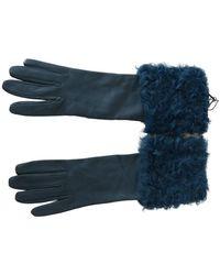Dolce & Gabbana Mid Arm Leather Shearling Fur Handschoenen - Blauw