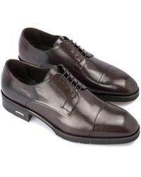Baldinini Lace-up shoes Marrón