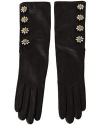 Dolce & Gabbana Lambskin Leather Crystal Elbow Gloves - Zwart
