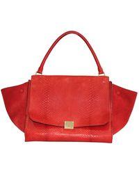 Céline Vintage Python Trapeze Bag - Rouge