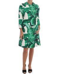 Dolce & Gabbana Jas Banana Leaf Trench - Groen