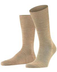 FALKE Socks 14435/5038 - Naturel