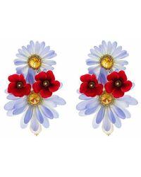 Dolce & Gabbana Oorbellen Met Bloemen - Paars