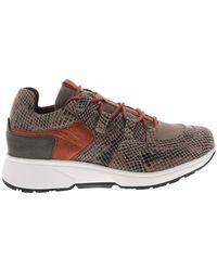 Xsensible Sneakers - Bruin