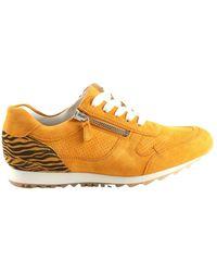 HASSIA Sneakers 301917-8300 - Arancione