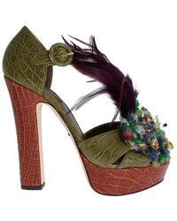 Dolce & Gabbana Kaimanschuhe - Grün