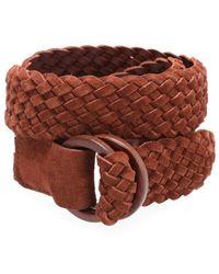 Anderson's Belt - Braun