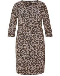Rabe Dress 43-114461 - Bruin