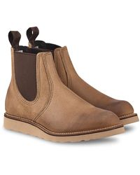 Red Wing Classic Chelsea 3192 - Bruin