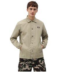 Dickies Oakport coach jacket - Neutre