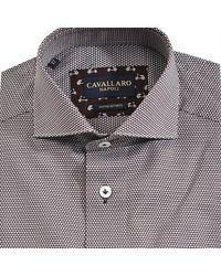 Cavallaro Shirt Marrón