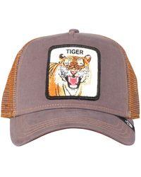 Goorin Bros Eye Of The Tiger Cap - Bruin