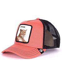 Goorin Bros Cougar Baseball - Roze
