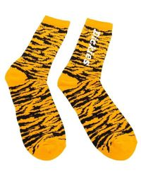 Dickies Socks - Oranje