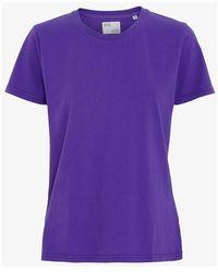 COLORFUL STANDARD Camiseta Orgánica - Paars