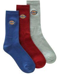 Dickies Socks 3-pack - Blauw